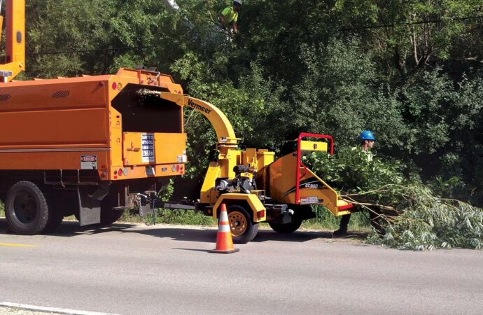 Commercial Tree Services-Hollywood FL Tree Trimming and Stump Grinding Services-We Offer Tree Trimming Services, Tree Removal, Tree Pruning, Tree Cutting, Residential and Commercial Tree Trimming Services, Storm Damage, Emergency Tree Removal, Land Clearing, Tree Companies, Tree Care Service, Stump Grinding, and we're the Best Tree Trimming Company Near You Guaranteed!