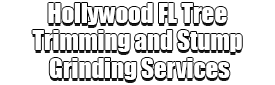 Hollywood FL Tree Trimming and Stump Grinding Services Logo-We Offer Tree Trimming Services, Tree Removal, Tree Pruning, Tree Cutting, Residential and Commercial Tree Trimming Services, Storm Damage, Emergency Tree Removal, Land Clearing, Tree Companies, Tree Care Service, Stump Grinding, and we're the Best Tree Trimming Company Near You Guaranteed!